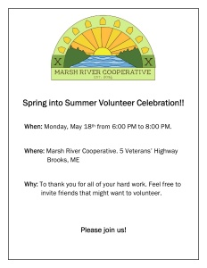 Volunteer Party Poster